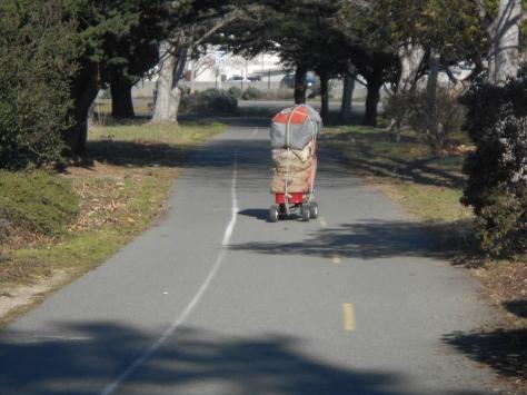Cart in Bay Trail Dec 11 2017