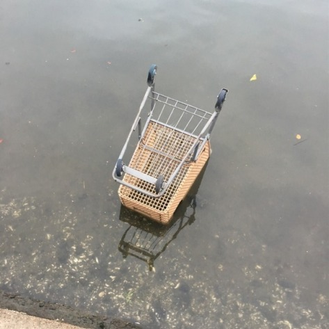 Shopping Cart in Lake Merritt